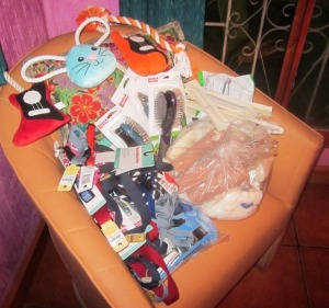 More Donated Supplies from All Creatures Animal Hospital